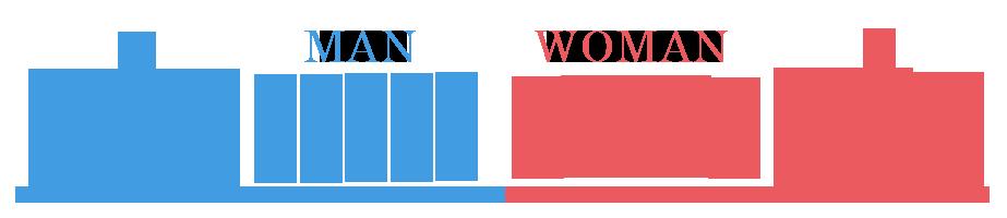 男女の割合